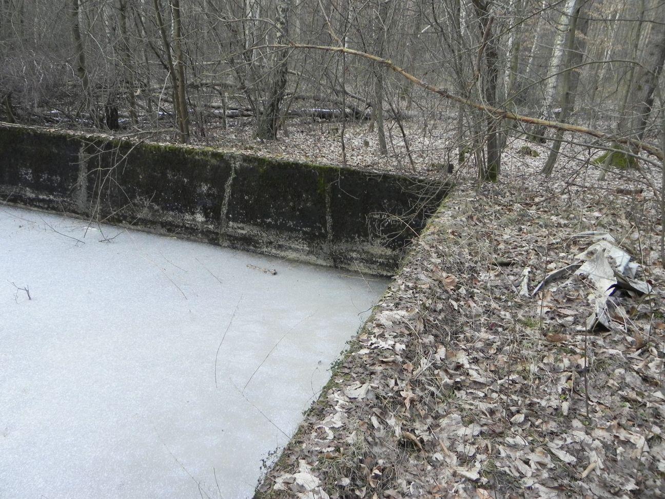 Jeleń - Bunkier Basen Przeciwpożarowy (19)