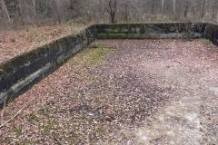 Jeleń - Bunkier Basen Przeciwpożarowy (7)