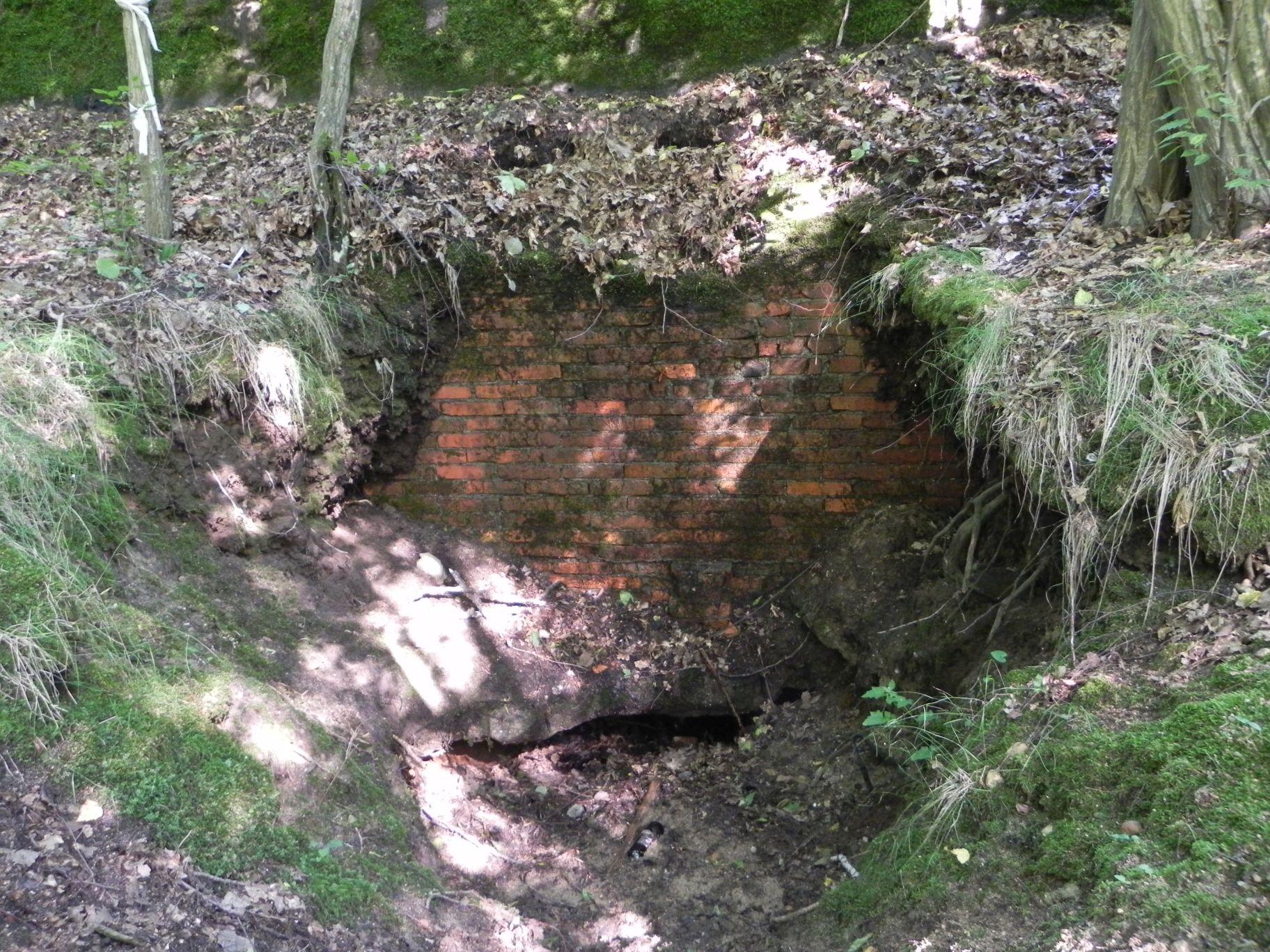Jeleń - Bunkier Główny Podmurówka (10)