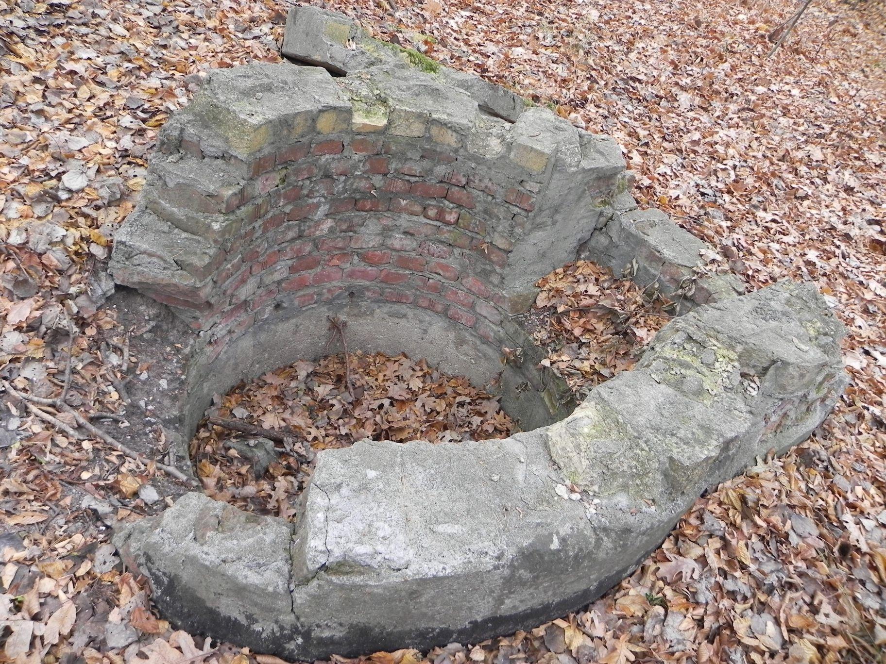 Jeleń - Bunkier Studnia (2)