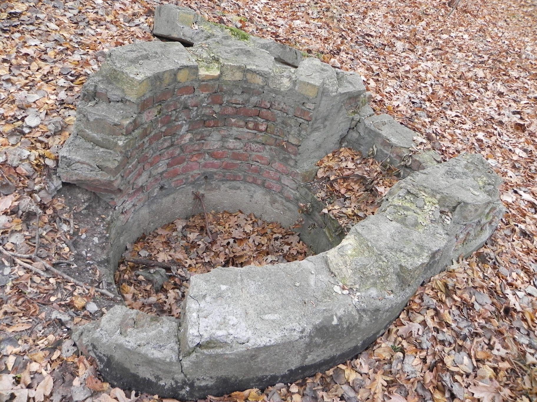 Jeleń - Bunkier Studnia (3)