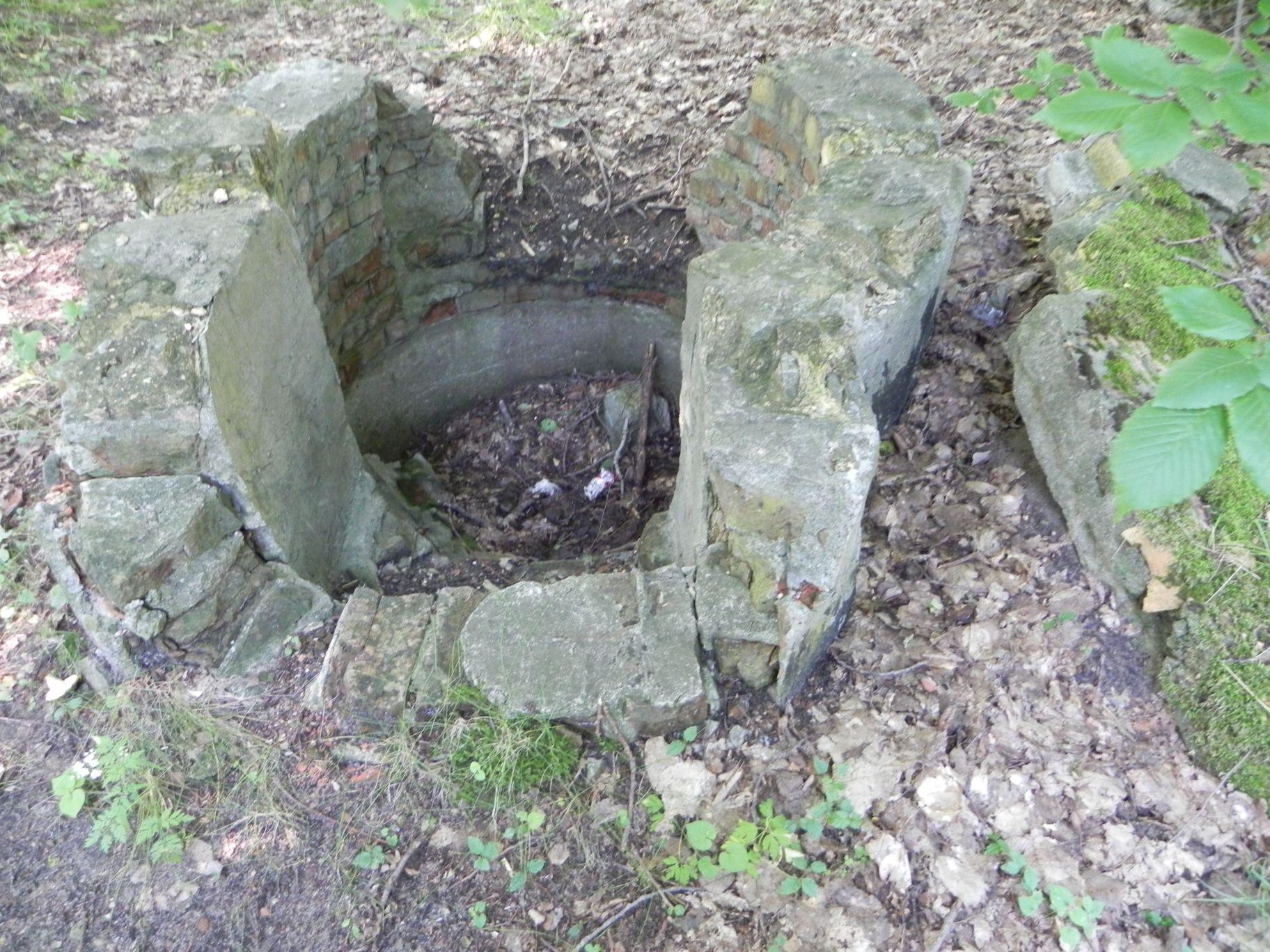 Jeleń - Bunkier Studnia (5)