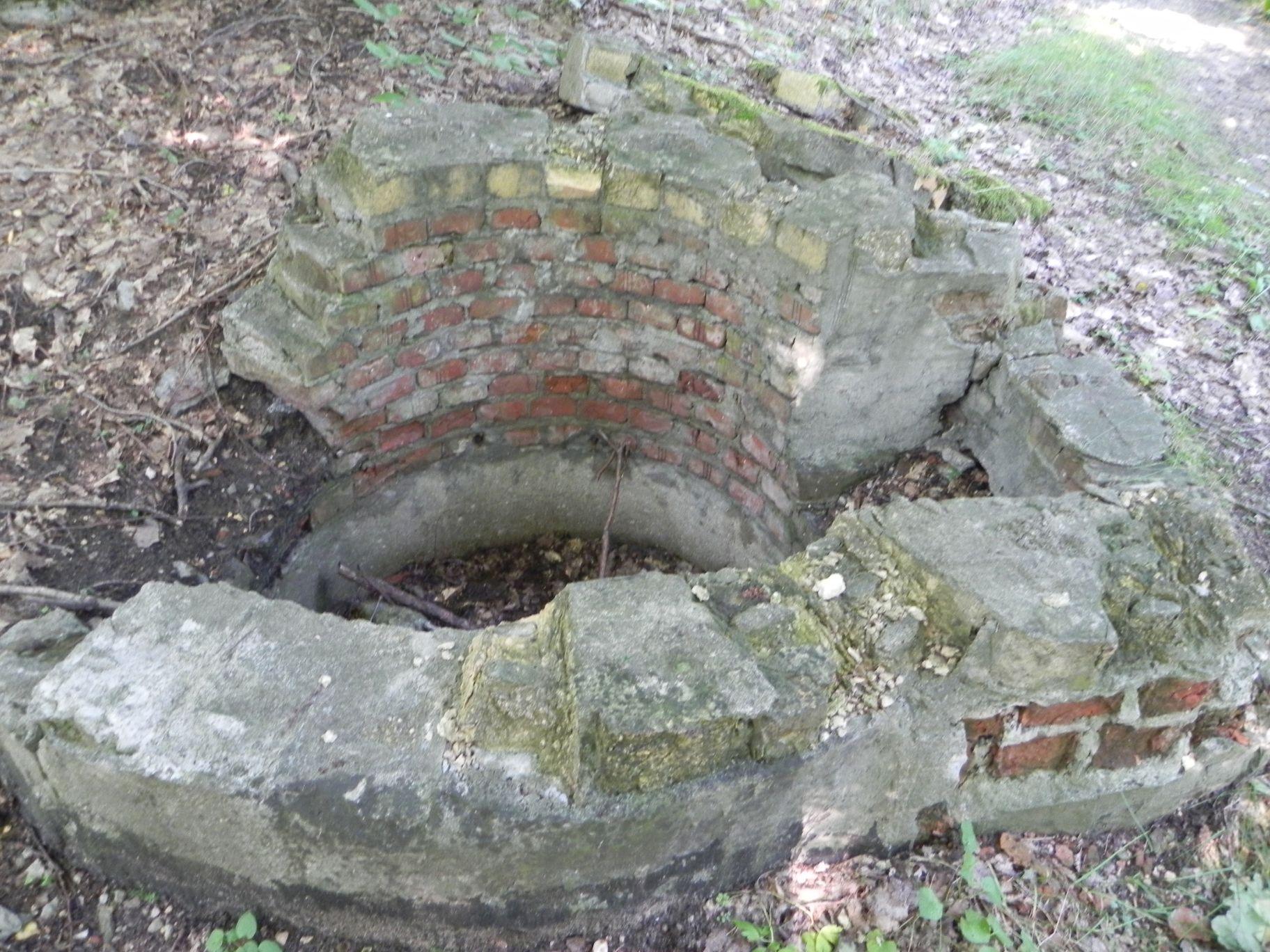 Jeleń - Bunkier Studnia (7)