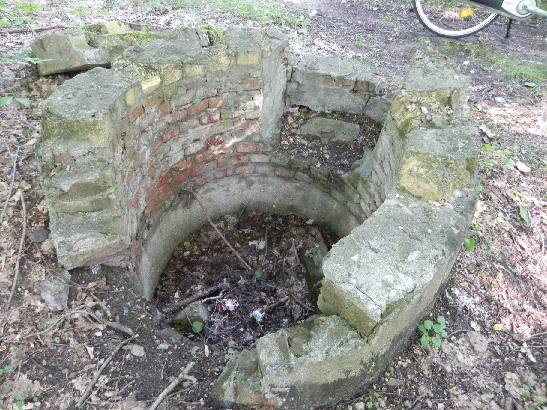 Jeleń - Bunkier Studnia (8)