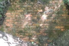 Jeleń - Bunkier Główny Podmurówka (1)