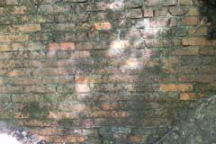 Jeleń - Bunkier Główny Podmurówka (15)