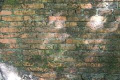 Jeleń - Bunkier Główny Podmurówka (2)