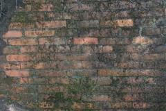 Jeleń - Bunkier Główny Podmurówka (4)