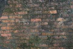 Jeleń - Bunkier Główny Podmurówka (5)
