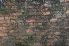 Jeleń - Bunkier Główny Podmurówka (7)