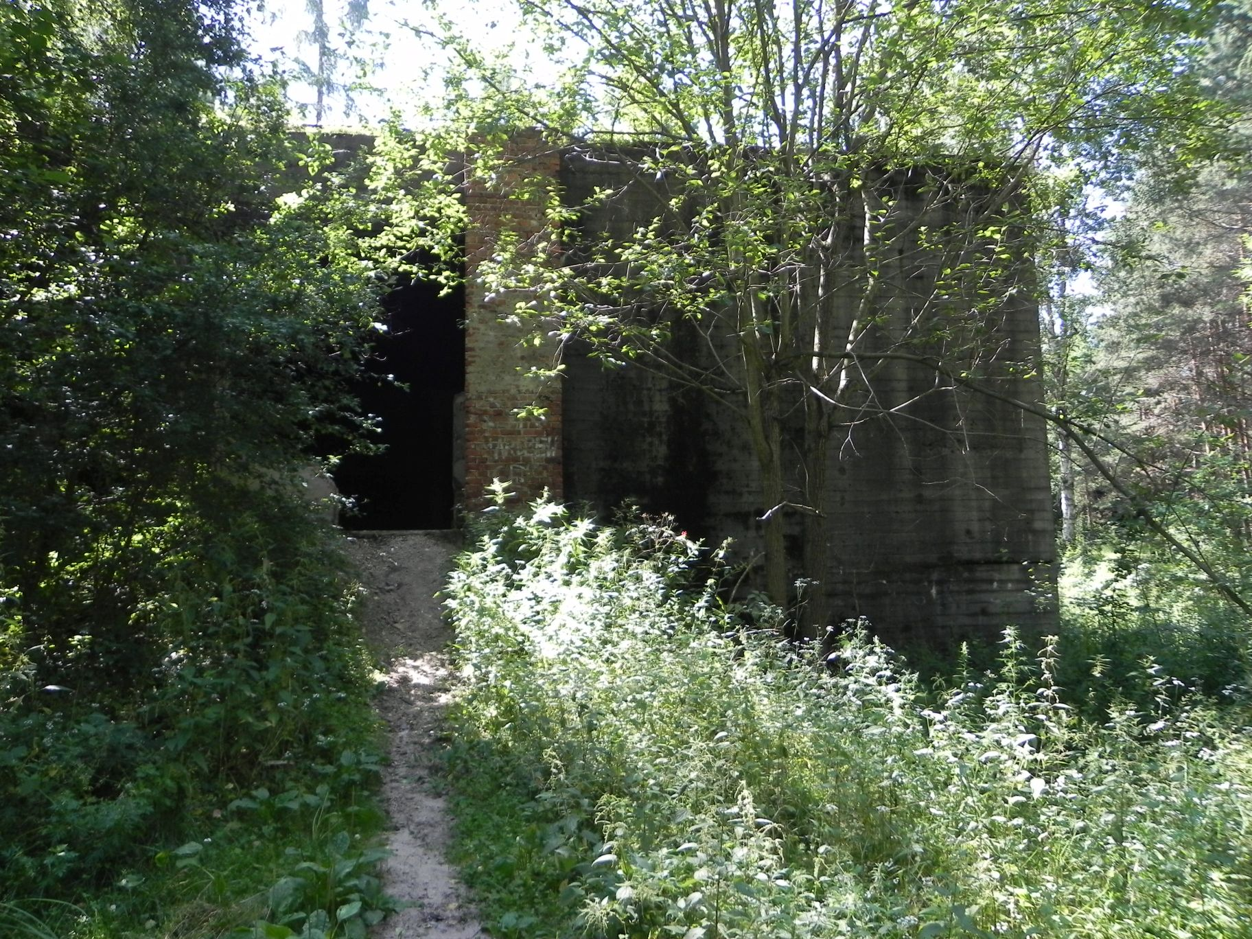 Jeleń - Bunkier Hydrofornia (29)
