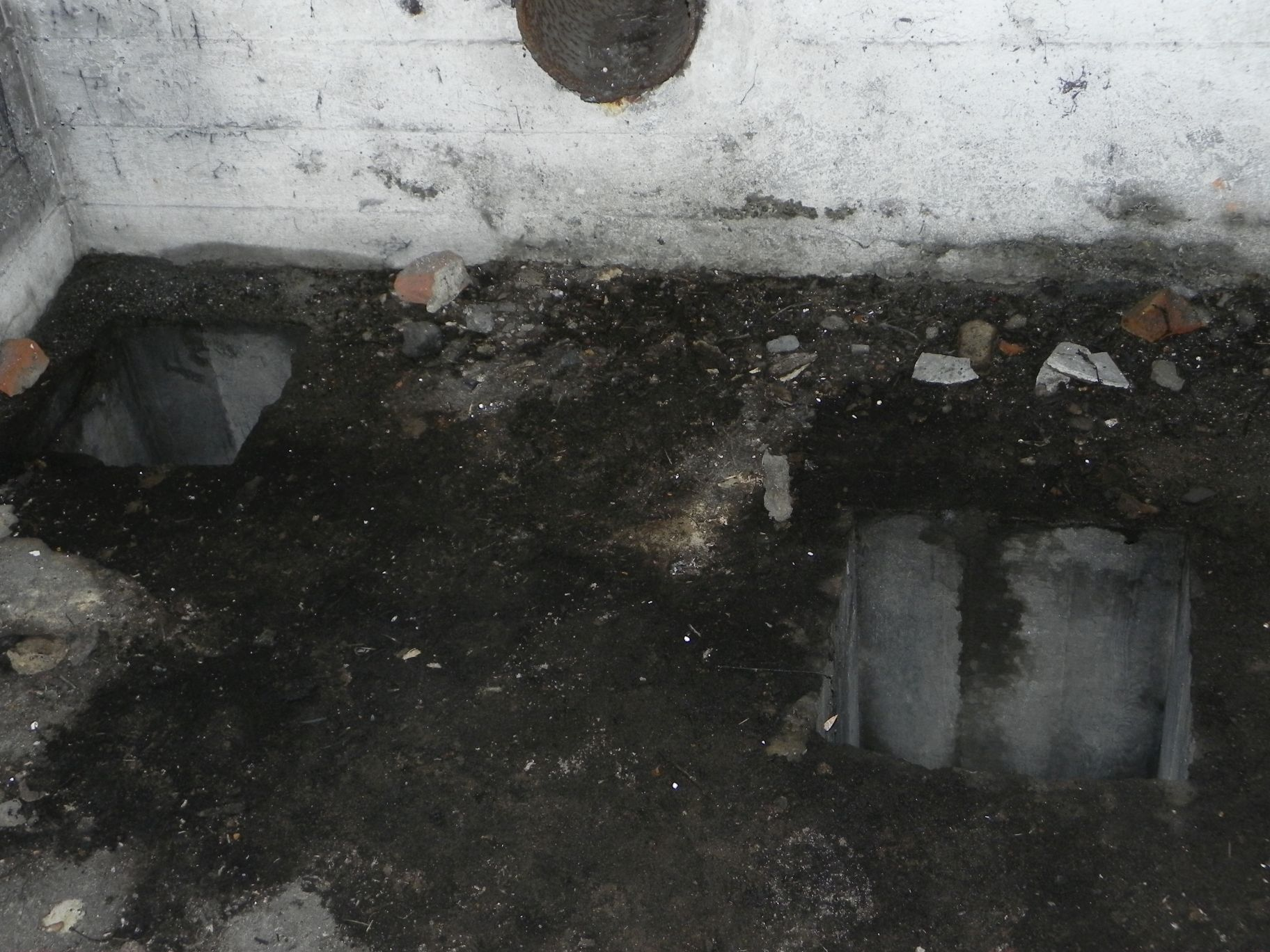 Jeleń - Bunkier Hydrofornia (41)