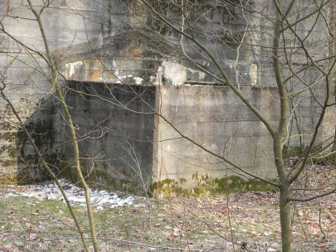 Jeleń - Bunkier Hydrofornia (56)