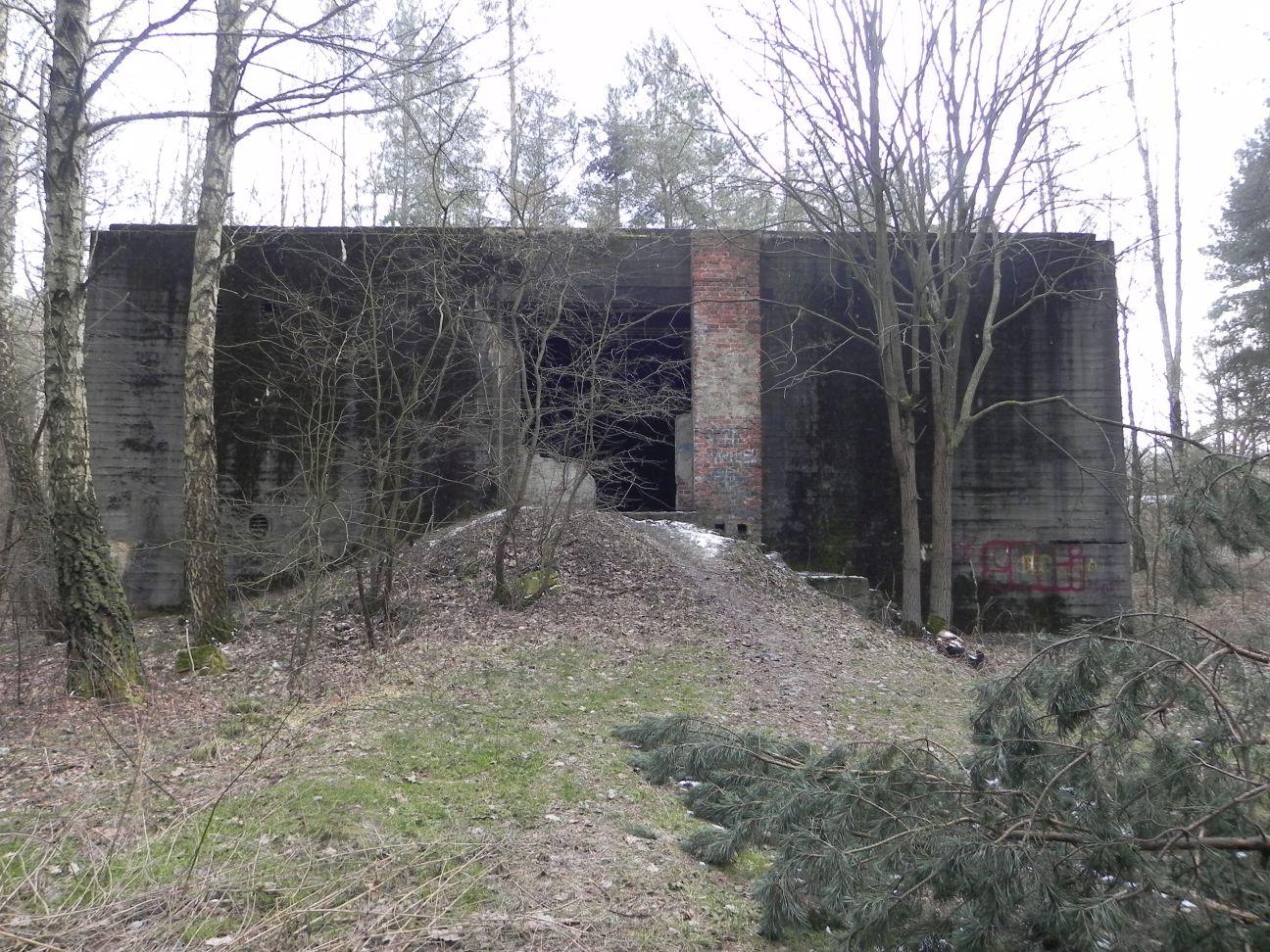 Jeleń - Bunkier Hydrofornia (58)