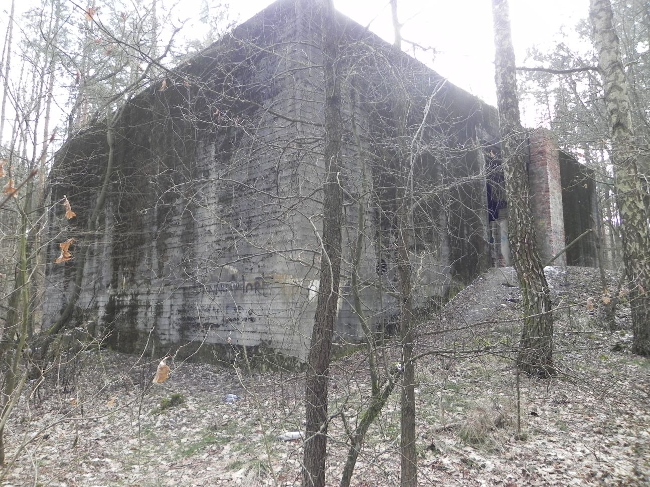 Jeleń - Bunkier Hydrofornia (60)