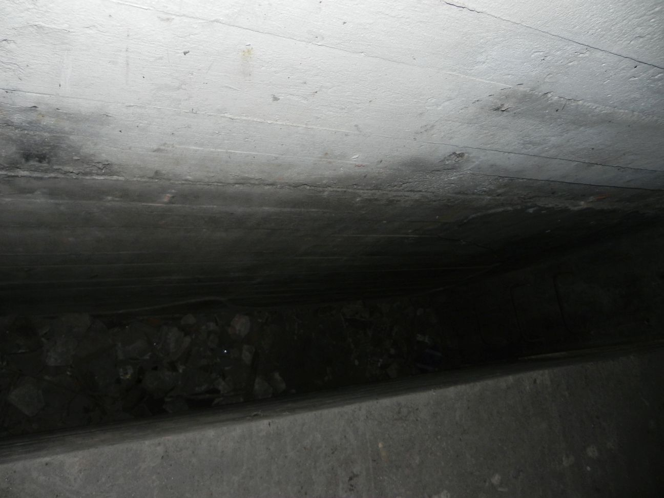 Jeleń - Bunkier Hydrofornia (67)