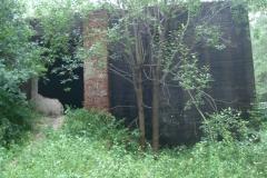 Jeleń - Bunkier Hydrofornia (25)
