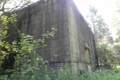 Jeleń - Bunkier Hydrofornia (28)