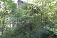 Jeleń - Bunkier Hydrofornia (30)