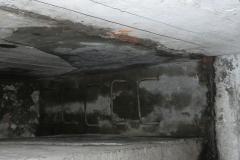 Jeleń - Bunkier Hydrofornia (36)