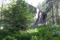 Jeleń - Bunkier Hydrofornia (45)