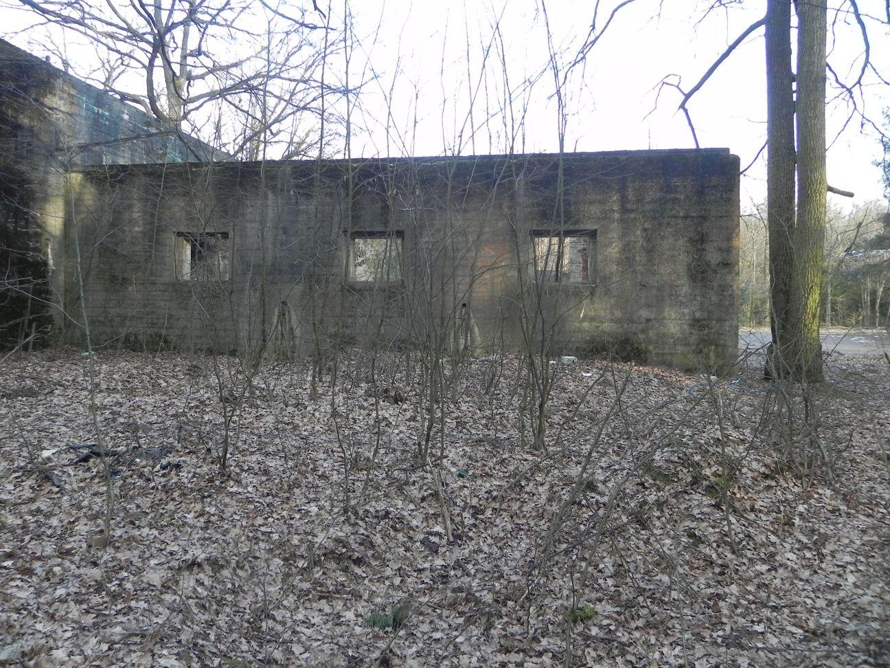 Jeleń - Bunkier Techniczny (100)
