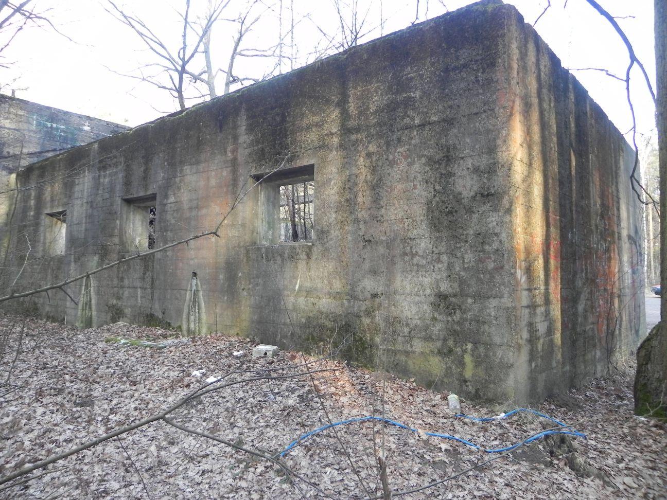 Jeleń - Bunkier Techniczny (101)