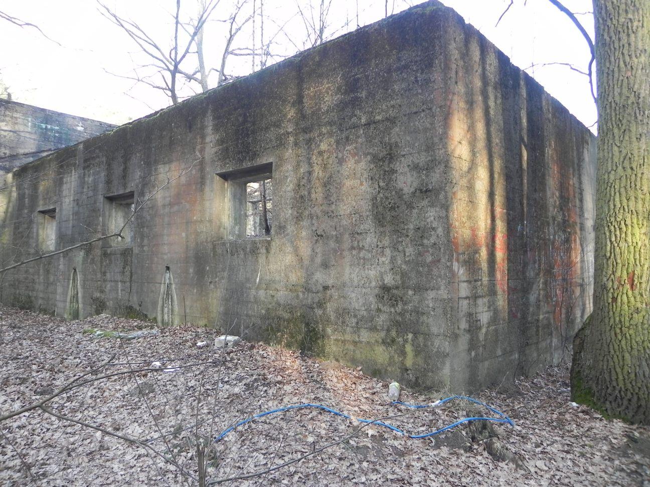 Jeleń - Bunkier Techniczny (105)