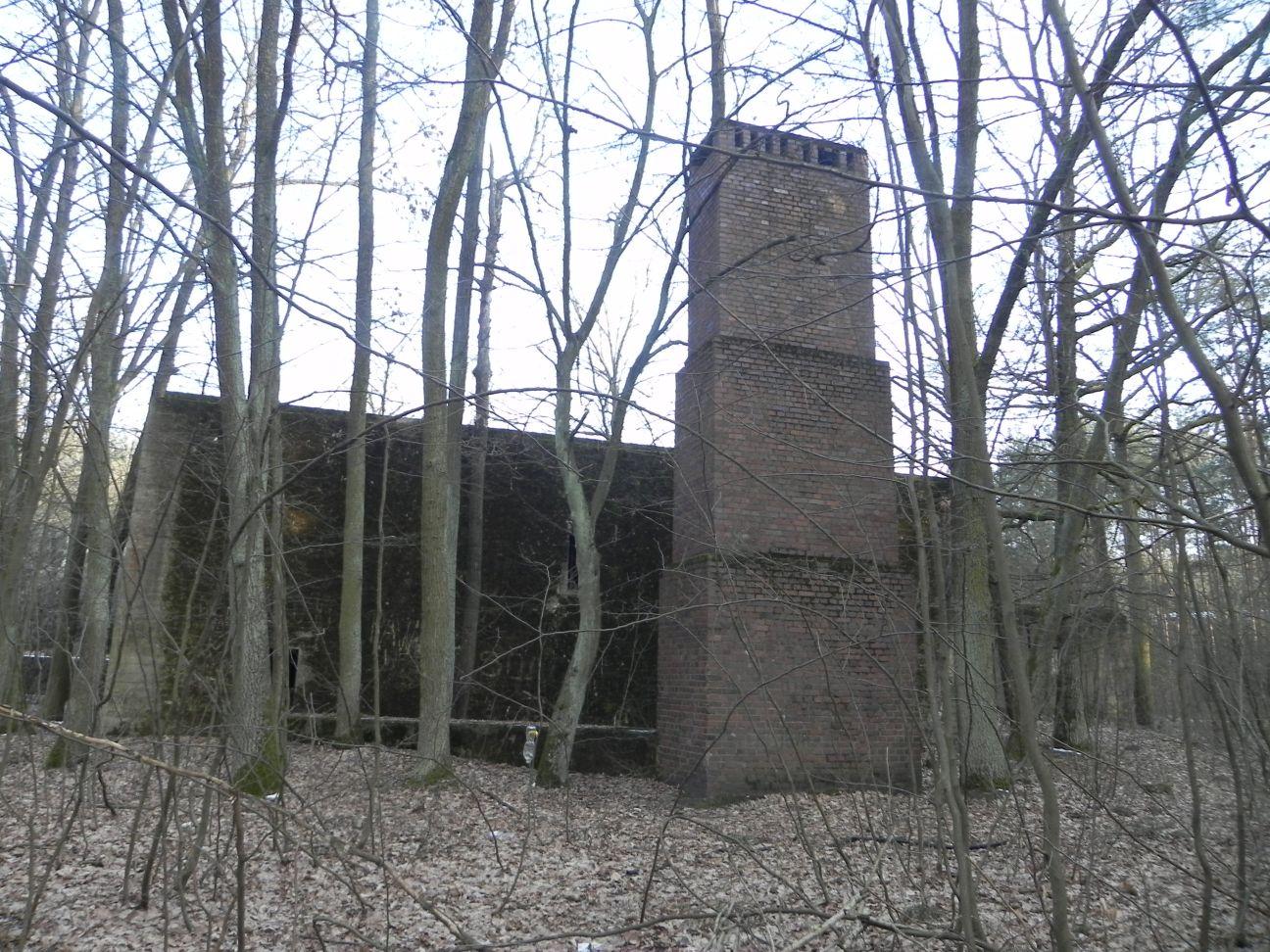 Jeleń - Bunkier Techniczny (117)