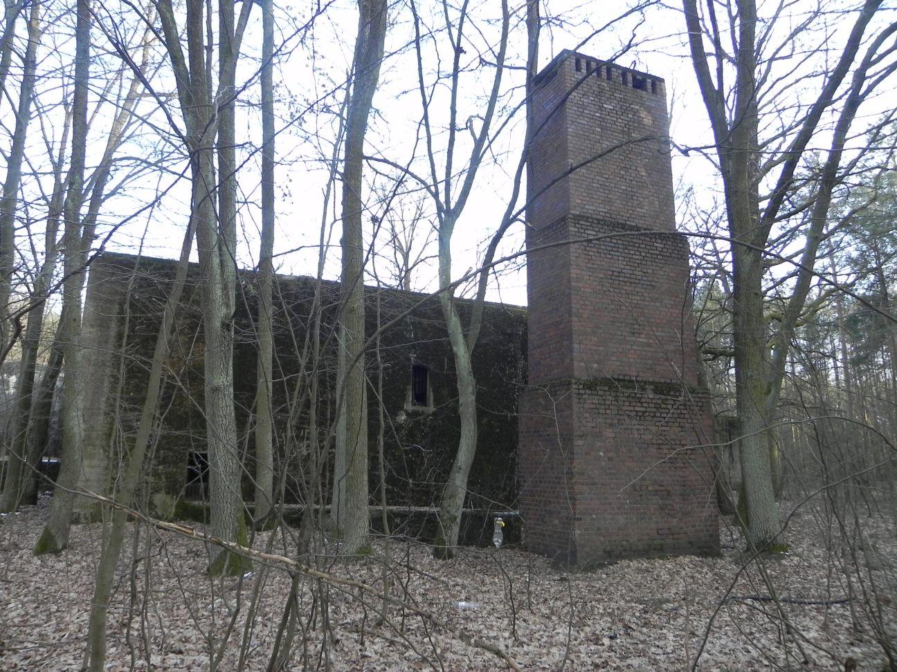 Jeleń - Bunkier Techniczny (118)