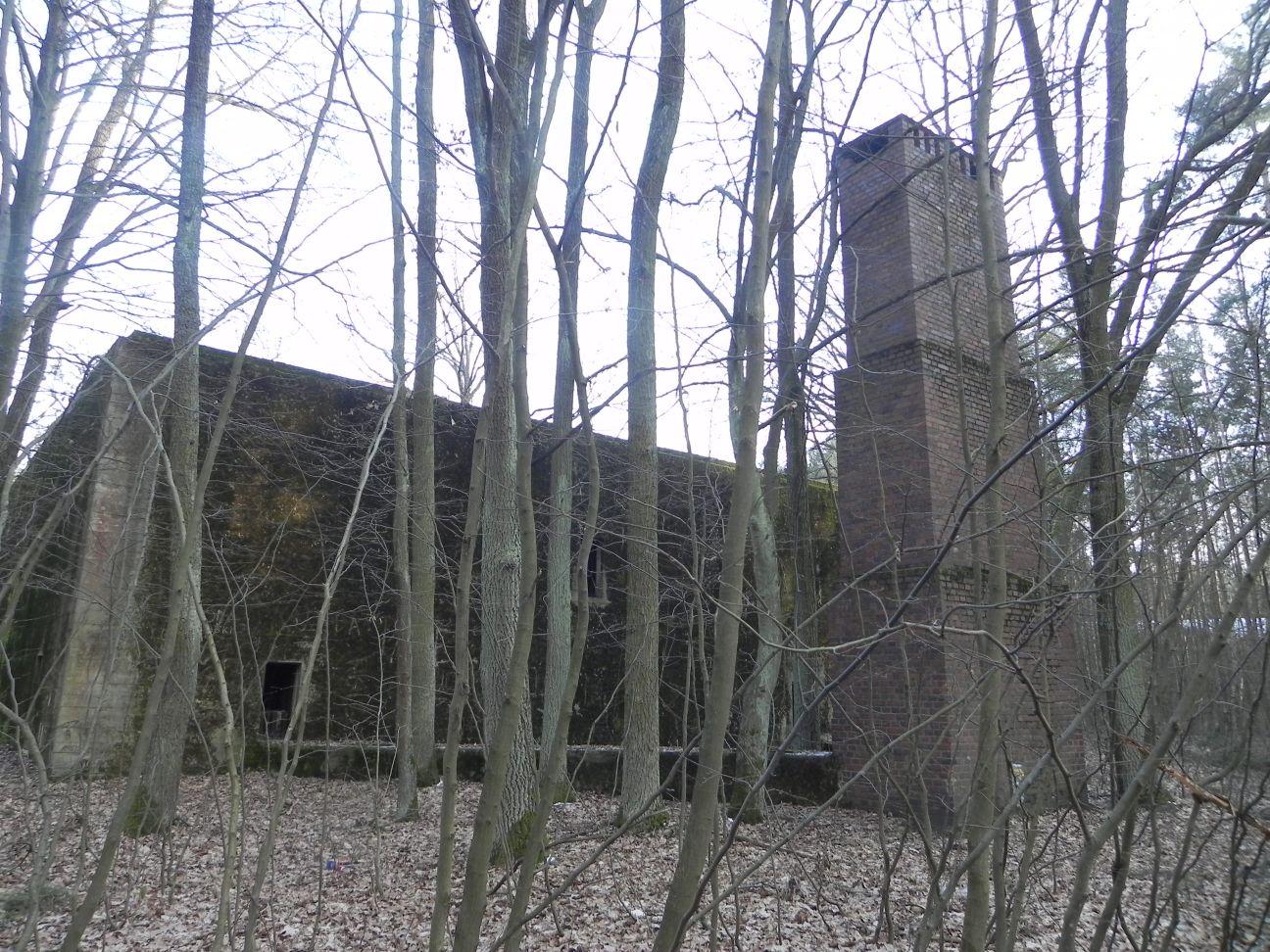 Jeleń - Bunkier Techniczny (119)