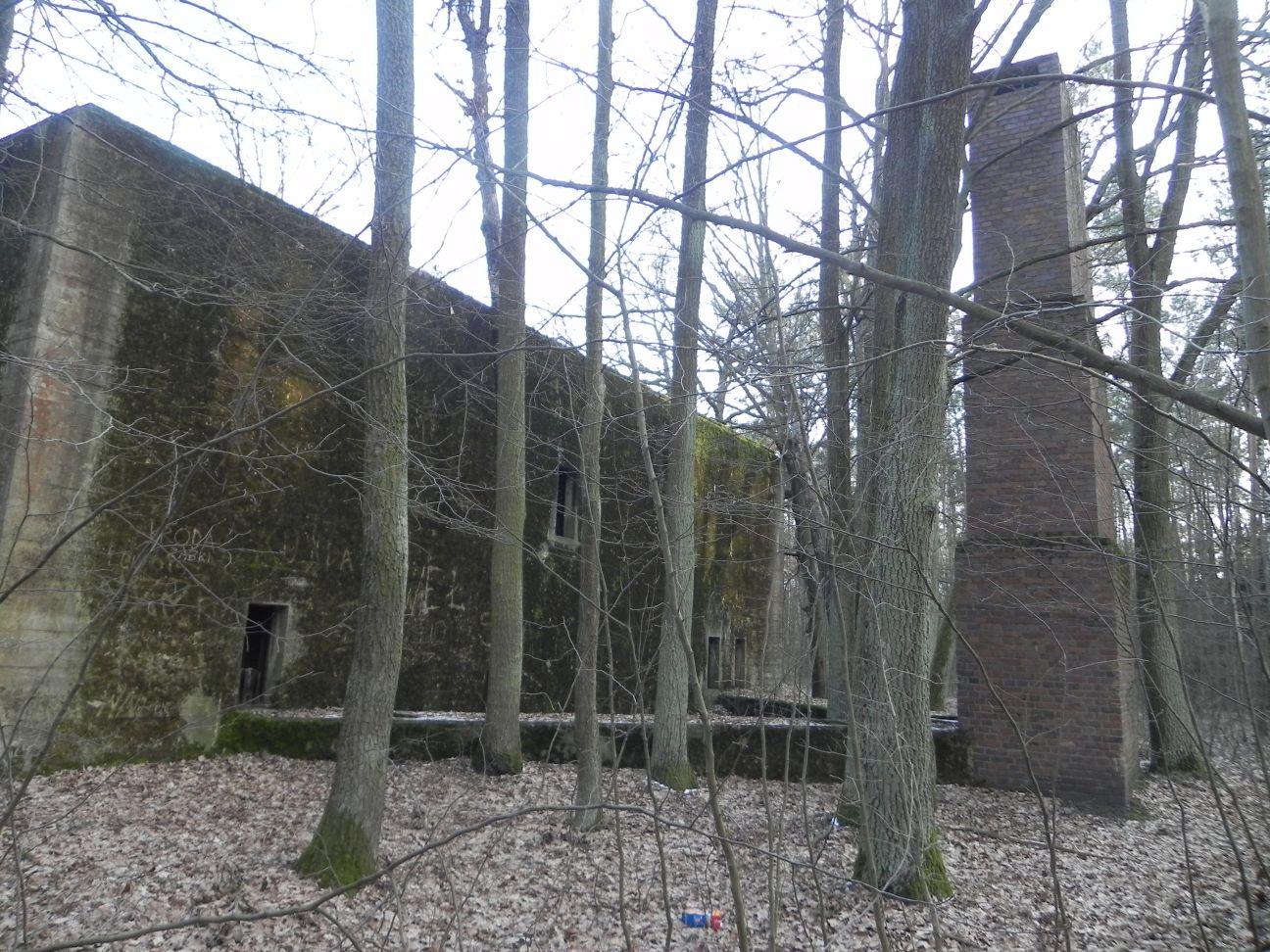 Jeleń - Bunkier Techniczny (120)