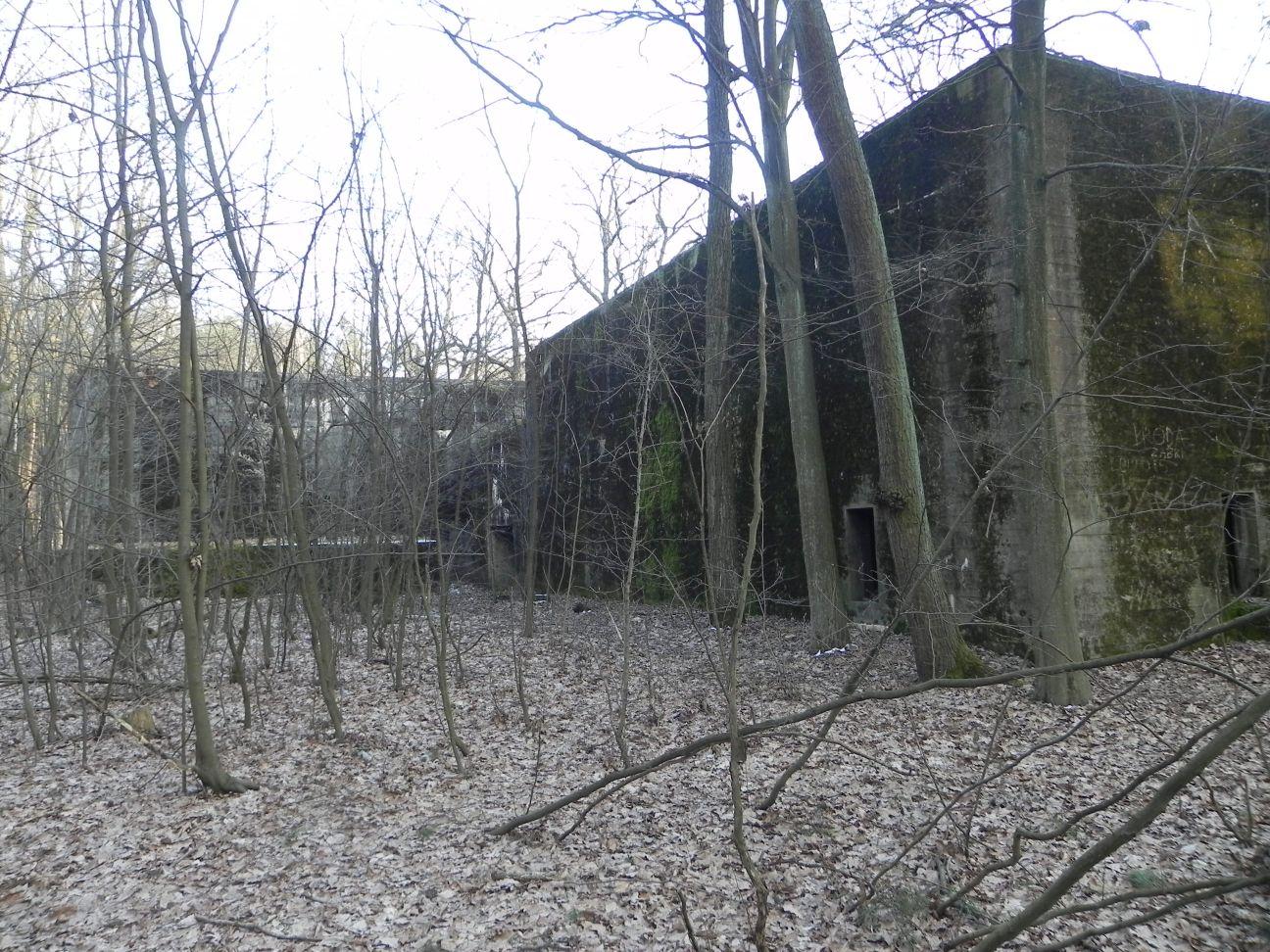 Jeleń - Bunkier Techniczny (129)