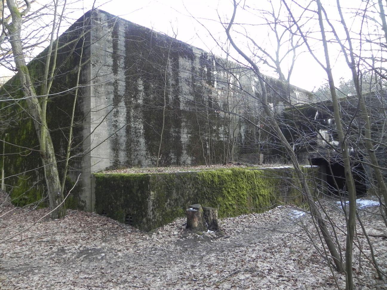Jeleń - Bunkier Techniczny (135)