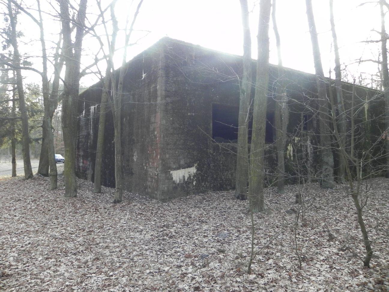 Jeleń - Bunkier Techniczny (138)