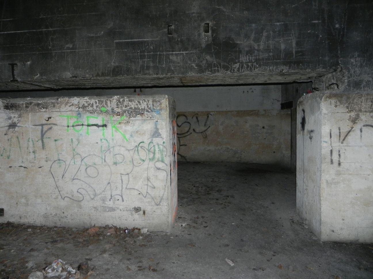 Jeleń - Bunkier Techniczny (148)