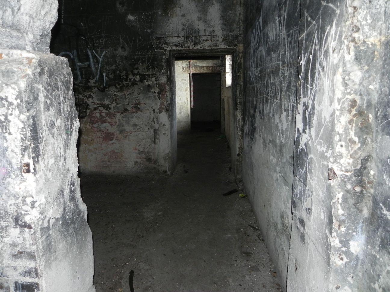 Jeleń - Bunkier Techniczny (154)