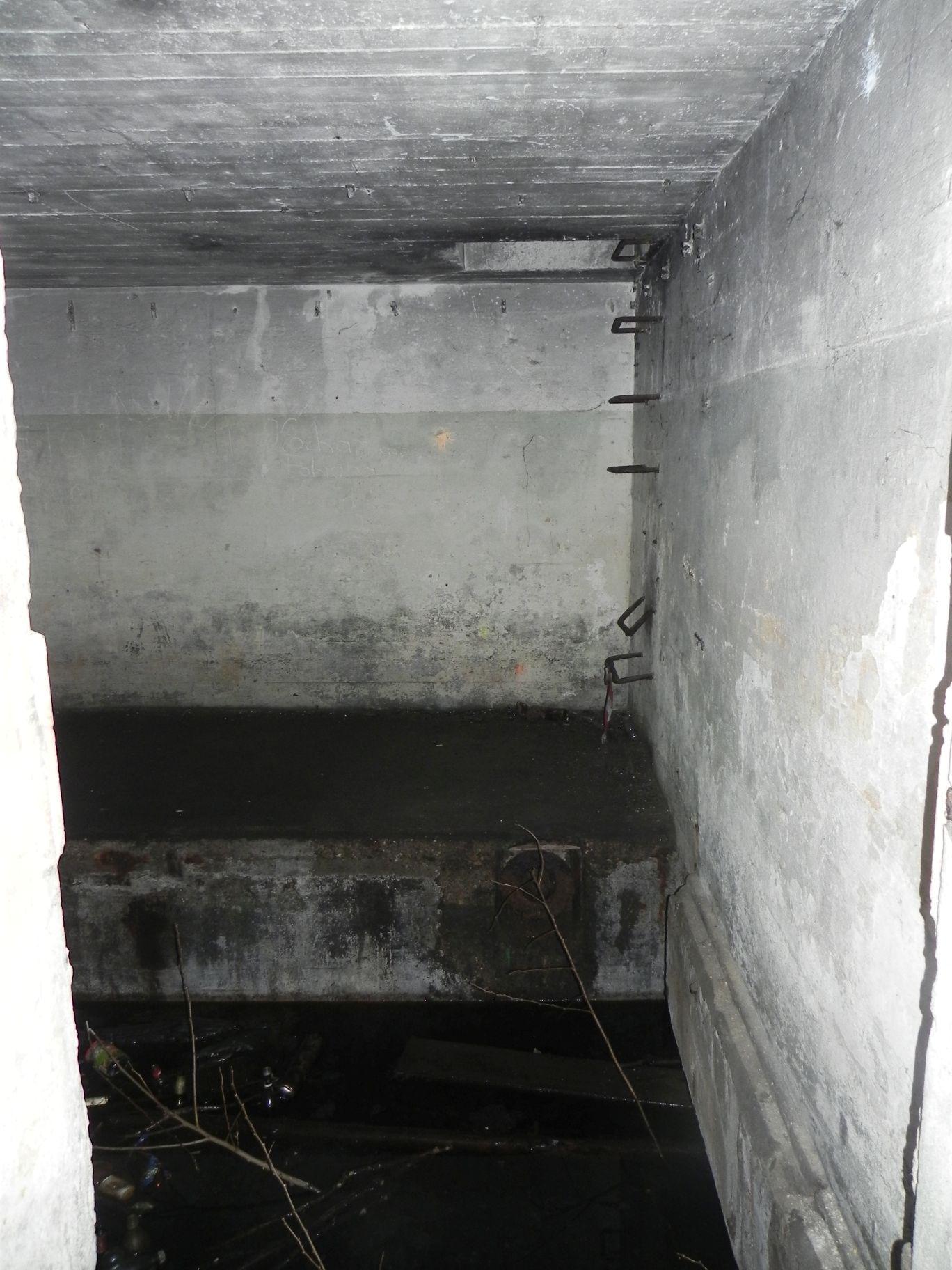 Jeleń - Bunkier Techniczny (47)
