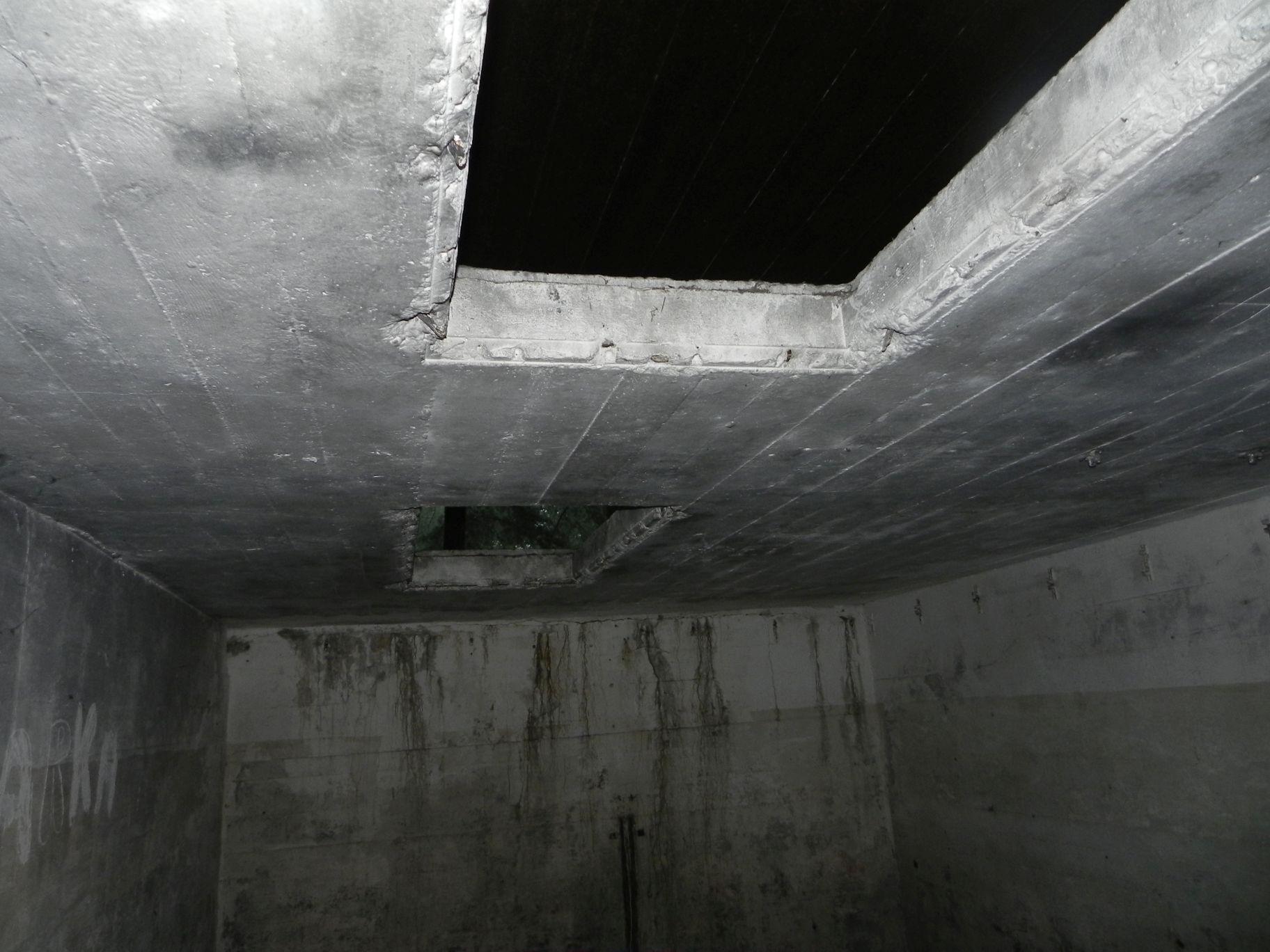 Jeleń - Bunkier Techniczny (55)