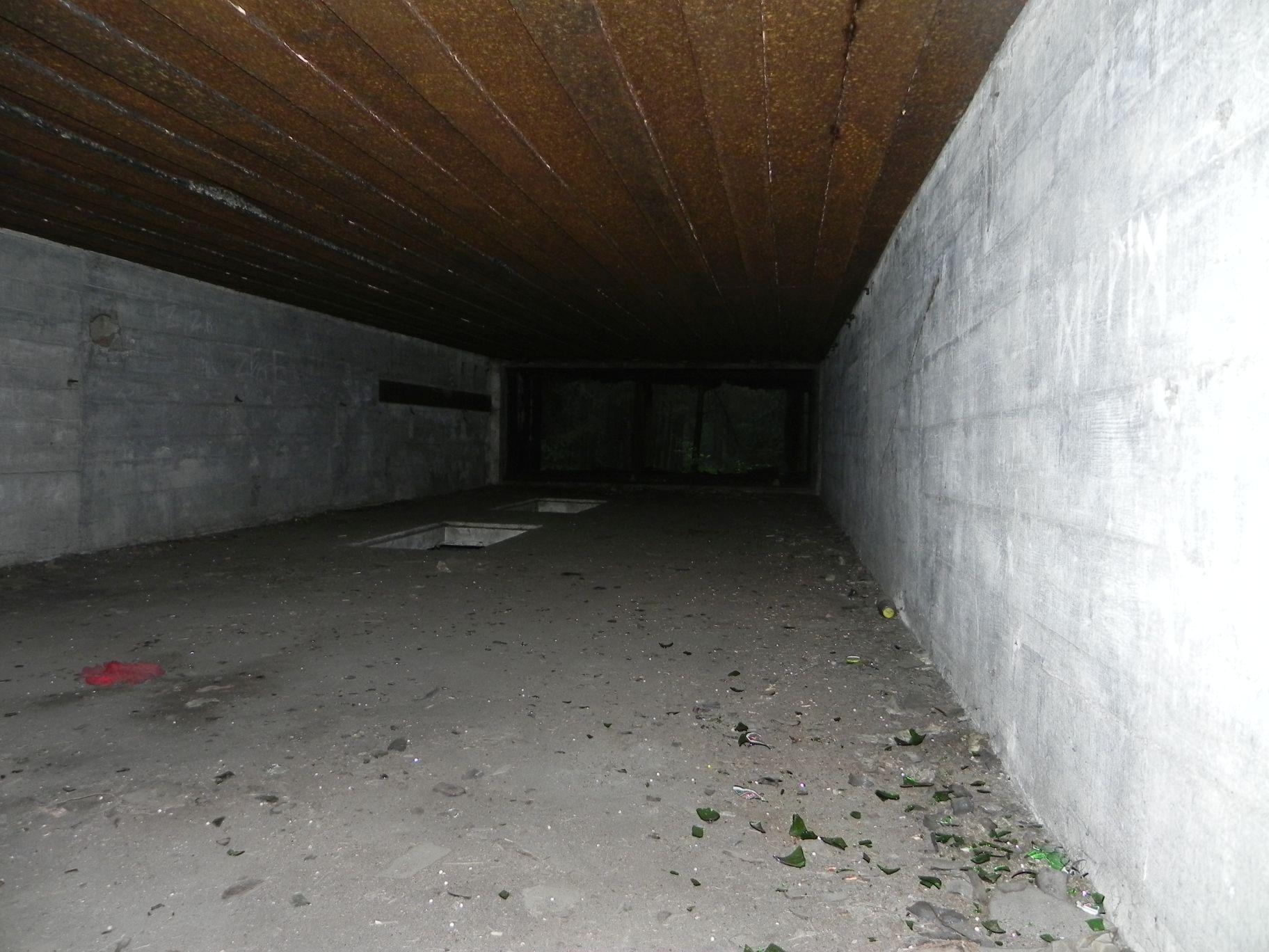 Jeleń - Bunkier Techniczny (58)