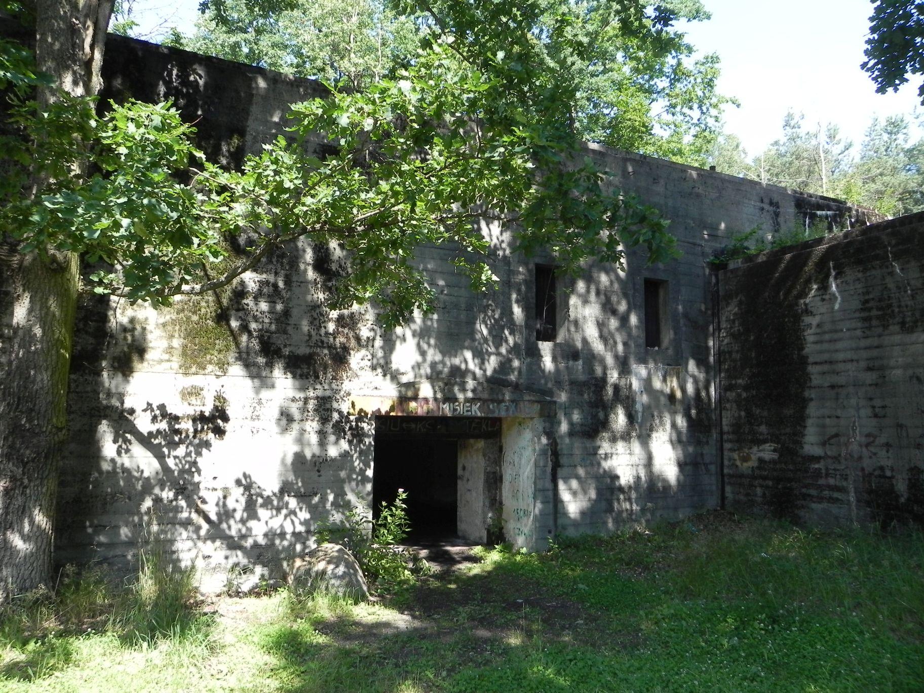 Jeleń - Bunkier Techniczny (80)
