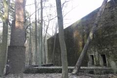 Jeleń - Bunkier Techniczny (108)