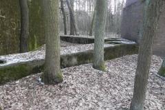 Jeleń - Bunkier Techniczny (121)