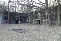 Jeleń - Bunkier Techniczny (141)