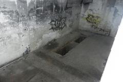 Jeleń - Bunkier Techniczny (64)