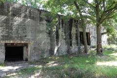 Jeleń - Bunkier Techniczny (78)