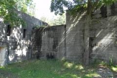 Jeleń - Bunkier Techniczny (79)