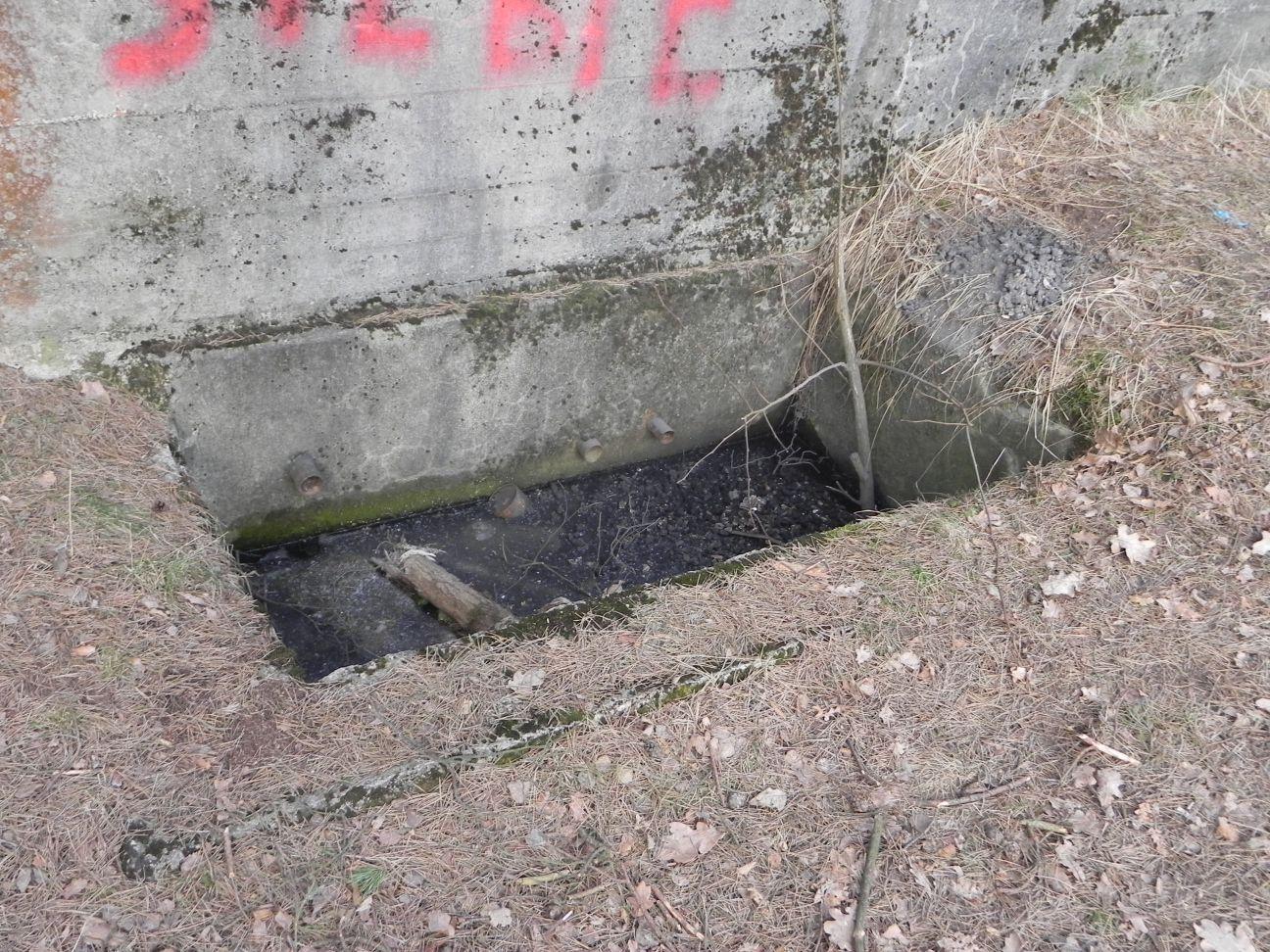 Jeleń - Bunkier Uzdatniania Wody (41)