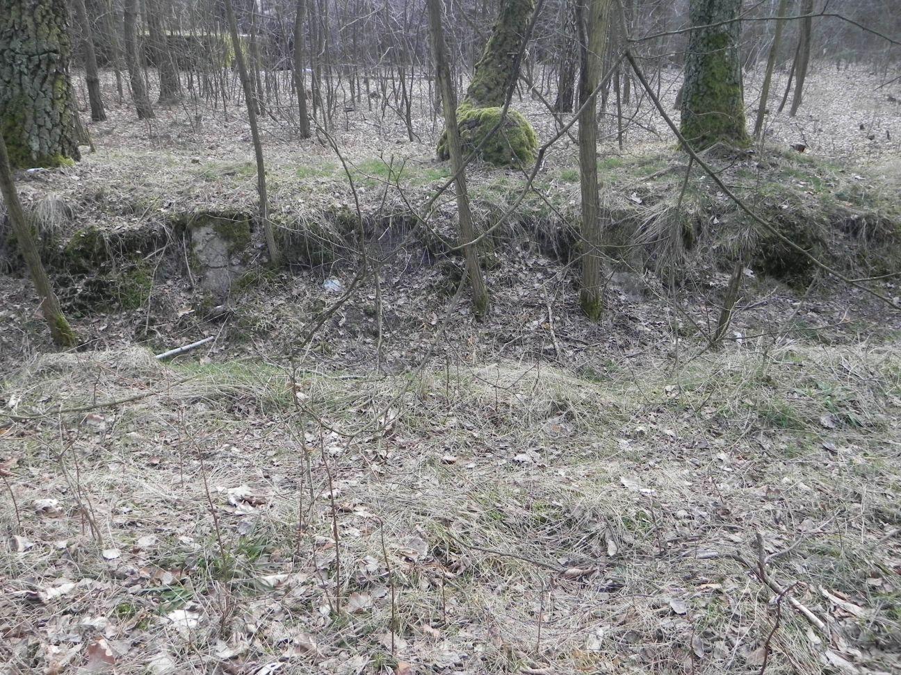 Jeleń - Bunkier Uzdatniania Wody (54)
