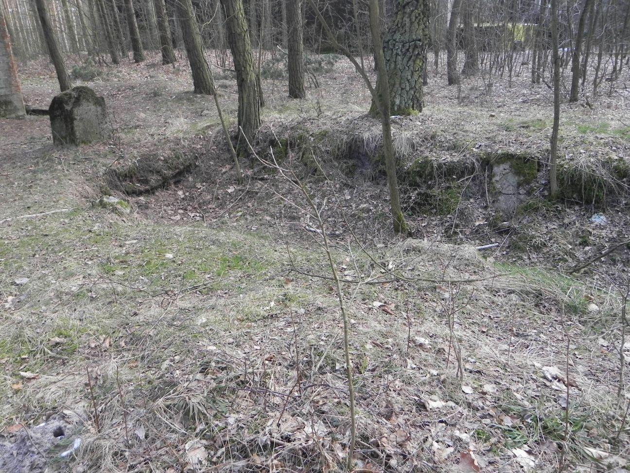 Jeleń - Bunkier Uzdatniania Wody (55)